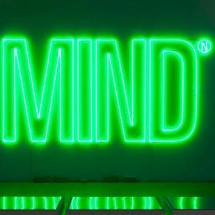 Mind, 2005