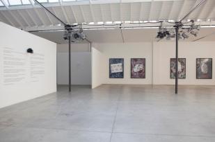 Felice Levini, Con gli occhi del gatto, 17 aprile – 14 giugno 2014