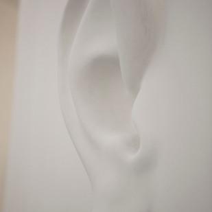 La pulce nell' orechio, 2013